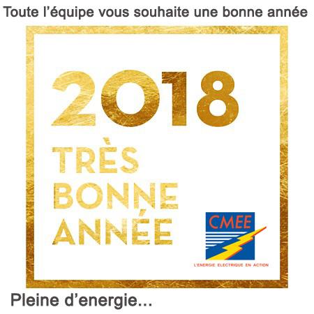 CMEE-2018-VOEUX